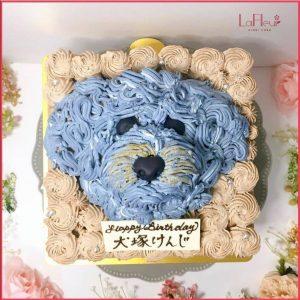 サプライズ ケーキ